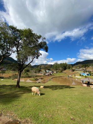 Camping Recanto dos Guapos
